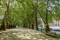 Snöra åt skugga på Park gränden, Porto, Portugal Royaltyfri Fotografi
