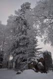 Snöscape arkivbild