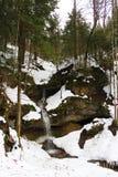 Snöskog Fotografering för Bildbyråer