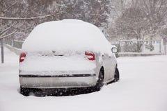 Snöstorm Royaltyfri Fotografi