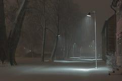 Snöstorm Arkivfoto