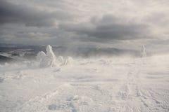 Snöstorm. Carpathian Ukraina. Arkivfoton