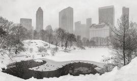 Snöstorm i Central Park med Midtownskyskrapor stad New York Arkivfoton