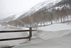 Snöstorm i fjällängarna royaltyfria foton