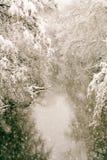 Snöstorm i sen vår Royaltyfria Bilder