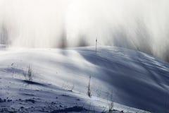 Snöstorm i vinterunderland Arkivfoton
