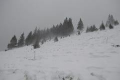Snöstorm på bergen Arkivfoton