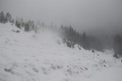 Snöstorm på bergen Royaltyfri Foto