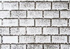 Snötrottoaren Arkivbilder