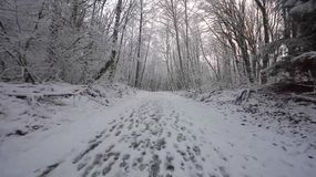 Snöväg i Finland Arkivfoton