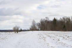 Snöväg på vintertiden Arkivfoton