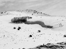 Snövåg i Colorado Arkivfoton