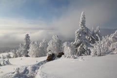 Snövesslor Fotografering för Bildbyråer