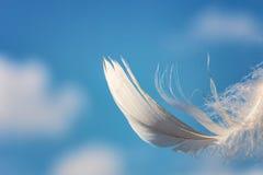 Snövit fjäder på bakgrund för blå himmel med moln, lightnessbegrepp royaltyfri foto