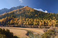 Sn?berg p? den Yading naturreserven, den sista Shangri laen, Daocheng-Yading, Sichuan, Kina arkivfoto