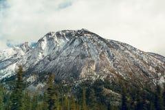 Sn? dammade av bergstoppet i den Banff nationalparken, Kanada arkivbild