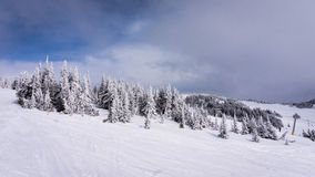 Snö täckt lock i den höga alpina Ski Area av solmaxima Arkivfoton