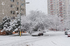 Snöa katastrofen i Bratislava Slovakien, enorma snöflingor 30th Januari 2015 Arkivfoto