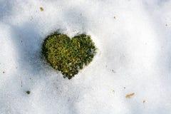 Snöa smältning i formen av en hjärta Fotografering för Bildbyråer