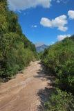 Snabb bergflod Baksan Arkivfoton
