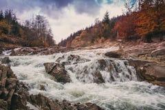Snabb bergström Vatten är tvättade bergstenar Floden i höstskogen Arkivbild