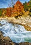 Snabb bergström Vatten är tvättade bergstenar Floden i höstskogen Royaltyfri Fotografi