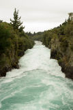 snabb flödande flod Royaltyfri Foto