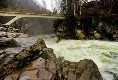 snabb flod Royaltyfria Bilder