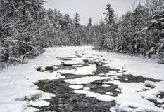 Snabb flod i Autumn White Mountains, New Hampshire arkivfoto
