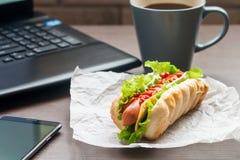 snabb lunch av hotdogen Royaltyfria Foton
