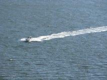 Snabb motorbåt Charleston Harbor South Carolina Arkivfoto