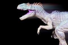 Snabb rinnande allosaurus med strimmor på svart arkivfoton