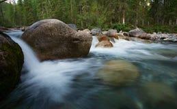 Snabb ström av bergfloden Arkivbild