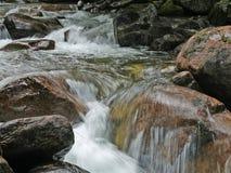 Snabb ström av bergfloden Arkivfoto
