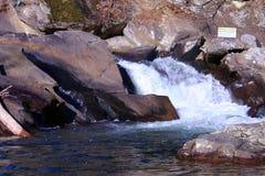 Snabba flodforsar i Smokey Mountains Royaltyfri Foto