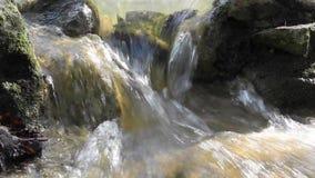 Snabbt flödande vatten nära en vattenfall lager videofilmer