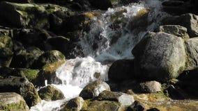 Snabbt flödande vatten nära en vattenfall arkivfilmer