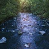 Snabbt flöde av en snabb bergflod med stenar längs picturen Royaltyfria Bilder