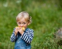 Snack auf der Natur Lizenzfreie Stockfotos