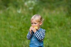 Snack auf der Natur Stockbild