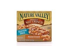 Snack bar della valle della natura Fotografie Stock Libere da Diritti