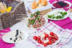 Snack of cheese, vegetables and salami on a picnic. Snacks of fresh tomatoes, basil, cheese and salami on the tablecloth on a picnic in the park royalty free stock photo
