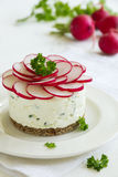 Snack-cheesecake made ��from cottage Royalty Free Stock Image