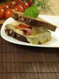 Snack met gesmolten kaas royalty-vrije stock foto's