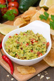 Snack - Mexican sauce guacamole and chips Stock Images