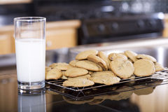 Snack of milk and cookies Stock Image