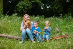 Snack on the nature. Mom with two children sitting in the woods on a fallen tree trunk and eating corn Royalty Free Stock Image