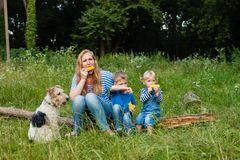 Snack on the nature. Mom with two children sitting in the woods on a fallen tree trunk and eating corn, fox terrier dof with family Stock Image