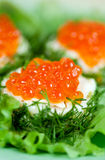 Snack with red salmon caviar. With fennel, soft focus Stock Photos
