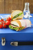 Snack sandwiches (panini) with vegetables Stock Photo